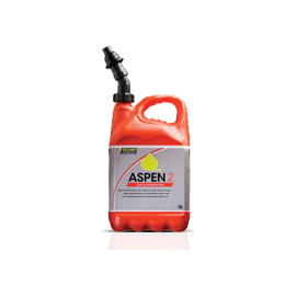 Aspen_1